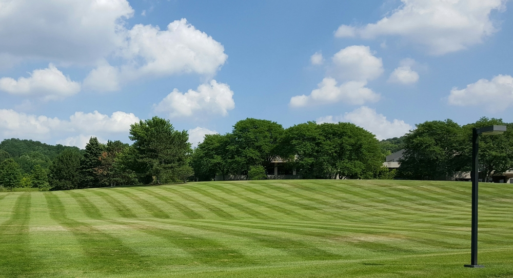 Minnetonka MN lawn care